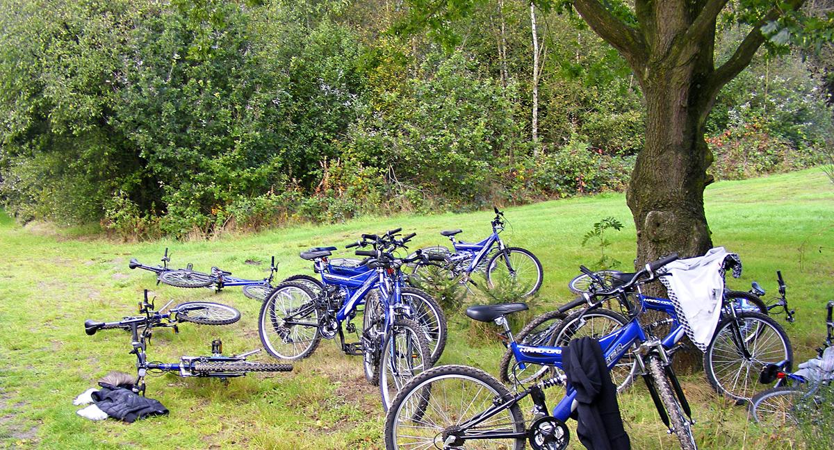 Fahrradland Niederlande